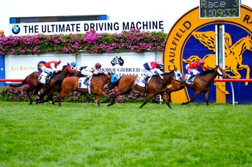Cavalry Rose wins the Group 3 Thoroughbred Club Stakes at Caulfield