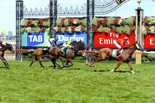 Flying Snitzel wins the Kewney Stakes