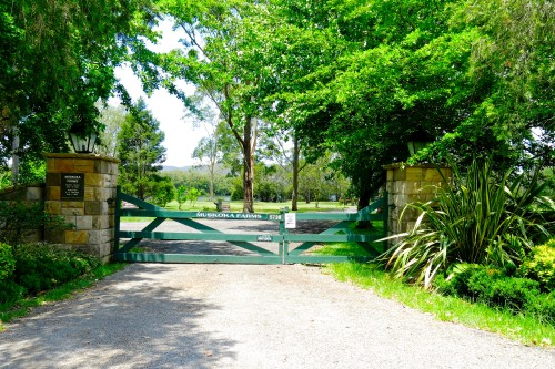 Entrance to Muskoka Farm