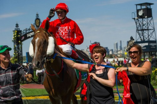 Flying Snitzel being lead in after another stakes win