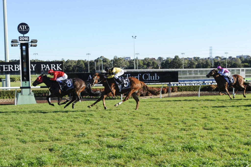 Redzel wins for Triple Crown Syndications and Snowden Racing
