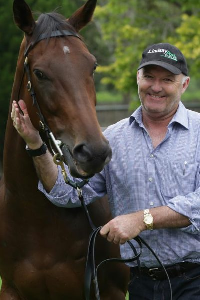 david hayes horse trainer