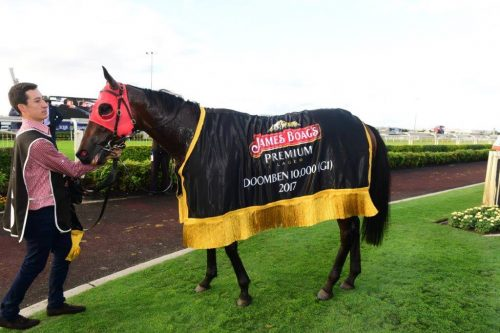 Redzel after the Group 1 Doomben 10,000 win