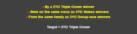 2yo-banner