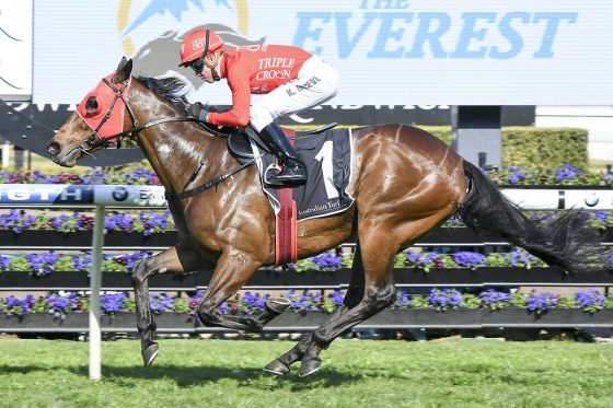 Redzel wins the Concorde Stakes on his way to The Everest
